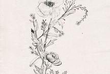 Illustrious / Illustration & Drawing / by Rachel Love Cameron