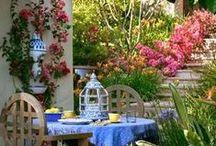Garden Party / by Joyce Angieri