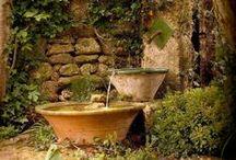 In the Garden / by Joyce Angieri