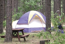 Camping in South Dakota / Over 50 state parks and recreation areas offer camping in South Dakota. During the peak summer season, you can reserve a spot 90 days in advance. Comfort stations close down during the winter months, but camping is welcome year-round.