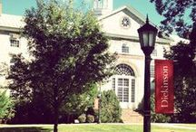 Our Campus: Dickinson College