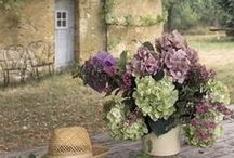 CREATE | this in Provence / Inspiring photos of homes, places, interiors, gardens of Provence in France.