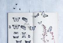 Inspiration / by Stephanie Antolik