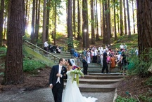 Weddings In The Garden / Photos From Garden Weddings And Receptions, Along  With Ideas We