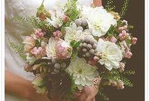bouquets & bouts. / by Caroline Jones