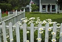 A Trip Down Daisy Lane....Daisy Cottage. / As with all my boards, feel free to pin whatever you like...:) / by Avis Blowers