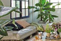Intratuin | Groene Oase / Een groene oase doet wonderen voor je huis, je gezondheid en humeur!