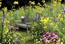Garden & Other Sanctuaries / by Angela Raimato