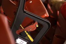 CARDINAL NATION ⚾❤ why yes I live in STL  / Birdz Baby !   / by Kimmie Fried