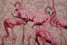 Pinks / Pretty.