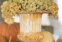Pots, Urns, etc. / For home and garden , beautiful containers add great decorative appeal.
