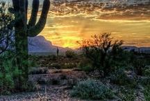 Imagens Campos, Montanhas, Desertos e Outros Relevos...