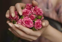 Say it With Flowers / say....cheer, love, comfort, just because.... so pretty.