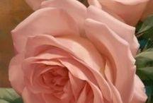 Flores: Rosas, Sempre Rosas...