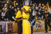 2015 Top Photos / Top photos from the 2015 NFL season. / by Pittsburgh Steelers