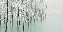 Wonderful World / Nature