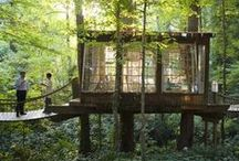 Wilderness fantasy / My fantasy of living a wild life in style.