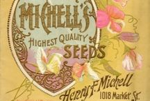 Vintage Seed Packets / Catalogs / by Anne-Marie