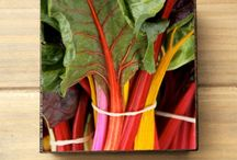 Avant Garden Studio / Artful goods and garden photography.
