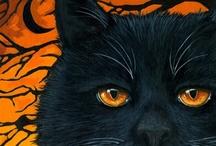 Holidays - Halloween / by Nancy Stipa
