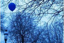 blue / by Tamie