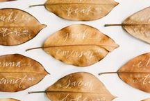 Thanksgiving Entertaining / A joint board with Glitter Guide + Lover.ly for all things Thanksgiving!  / by Glitter Guide