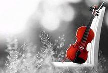 music / musica