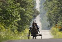 The World of the Amish People - from an admirer / It must be a wonderful life?