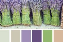 Lavender / by Lucie