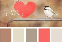 Beautiful colours / by Lucie