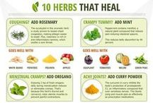 Healthy Living, Remedies, & Essential Oils / Healthy Living - Health - Natural Remedies & Alternatives