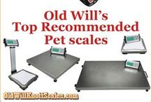 New At Old Will Knott Scales