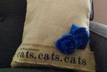 Love my Wildcats!