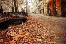 Fall / Syksy