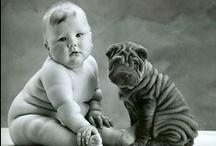 Cute Animals / by Debbie Green
