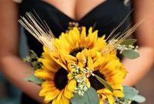 Wedding <3 / by Meg Nielsen