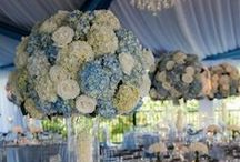Centerpieces - The Bigger the Better / by Tori - Platinum Elegance Weddings & Events