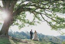 The image of love wedding love Maleny Manor / www.malenymanor.com.au Love Romance Wedding Sunshine Coast Queensland Australia