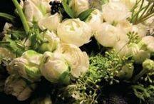 Shop Petal & Kettle Floral Boutique