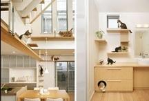 Pet Friendly Design / by Sea Coast Exclusive Properties