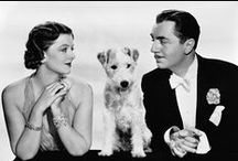 The Thin Man / A board for my favorite 1930's and 40's film series.   Feel free to visit and join my FaceBook group: William Powell and Myrna Loy. https://www.facebook.com/groups/617147358307289/