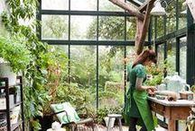 Garden / Sanctuaries & Sacred Places / Meditate, Dream, Renew