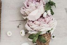 flores / Colores... aroma... belleza!!!  Un regalo de la naturaleza  / by Los Detalles de Bea