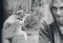 Cat Man Do / I love cats 'meow.