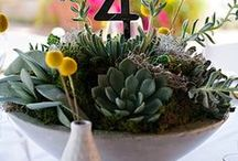 Reception: Centerpieces / Flowers, candles, table numbers . . . everything you need for the middle of your table! #arizonaweddingsmagazine
