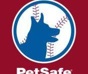Training and Bark Control / Teach your better behavior with training and bark control solutions from PetSafe