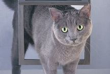 Pet Doors / Relax, we will let the dog out. With multiple styles of dog doors and cat doors, you are sure to find the solution for your pet and your home