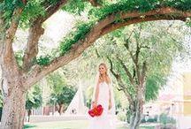 Wedding Day: Photography