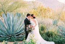AWM Editorial Features 16-17 / Arizona Weddings Magazine Editorial Features from our 2016-2017 print edition of the magazine!