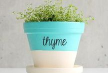 DIY-projects / DIY & Crafts / by Brittany Ramsey